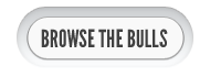 browse-bulls